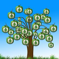 FXの初期資金はいくらが最適?初心者が知っておくべき運用資金の基礎知識